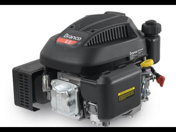 Motor B4T 6,0 Vfe - Eixo Curto - Partida Elétrica - Branco