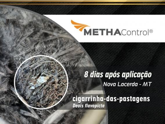 Inseticida Simbiose MethaControl®