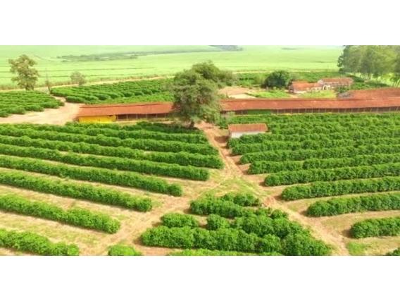 Credito Imobiliário E Rural.fazendas. Sítios, Chácaras,