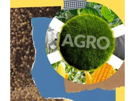 Credito rural para terras, maquinas, insumos e outros