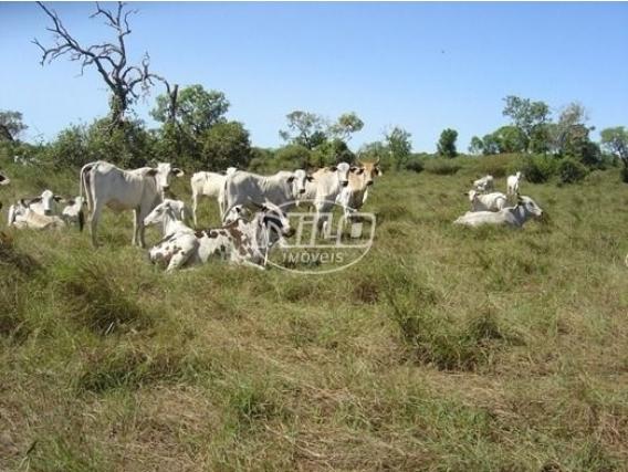 Fazenda A Venda Em Luciara - Mt