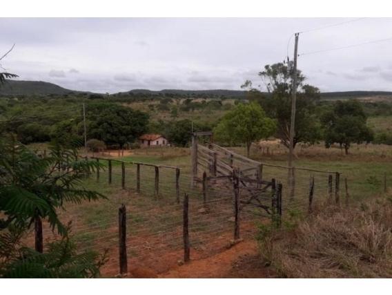 Fazenda Buenópolis - Mg
