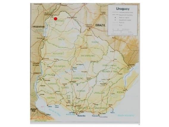 Fazenda Em Artigas Uruguai De 2925 Hectáres