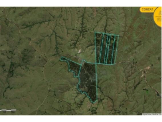 Fazenda Em Cerro Largo Uruguai De 508 Hectáres