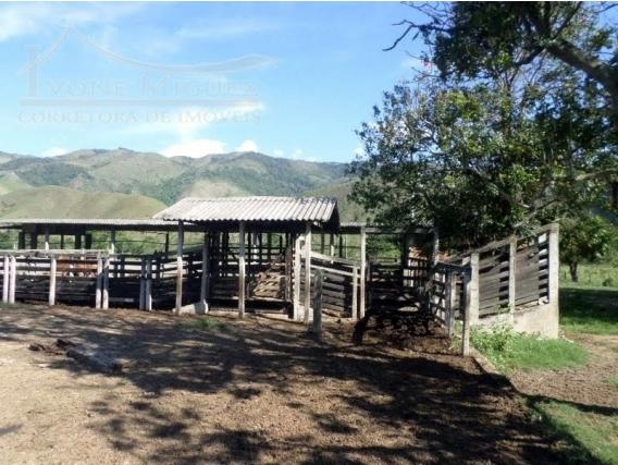 Fazenda Em Conrado - Miguel Pereira