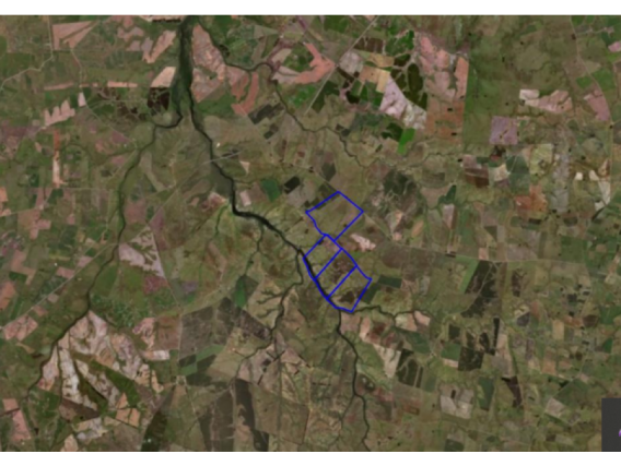 Fazenda Em Flores Uruguai de 785 Hectáres
