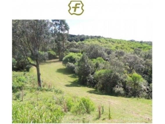 Fazenda Em Maldonado Uruguai De 46 Hectáres