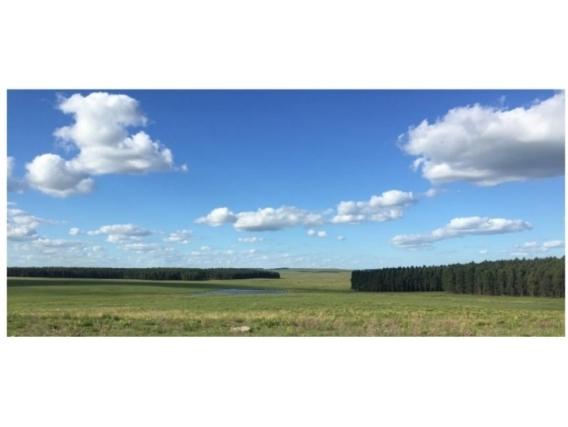 Fazenda Em Rio Negro Uruguai De 1087 Hectáres