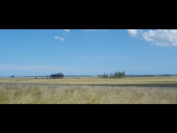 Fazenda em Rocha Uruguai de 802 Hectares