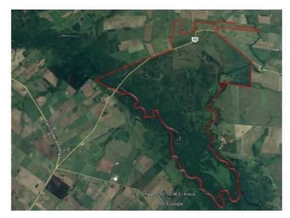 Fazenda Em São José Uruguai De 1165 Hectáres