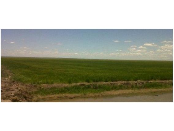 Fazenda em São Ignácio Paraguai de 2299 Hectáres