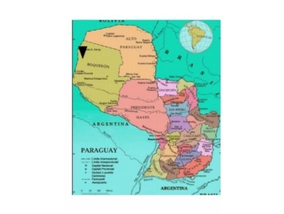 Fazenda Em Tenente Enciso Paraguai De 13175 Hectáres