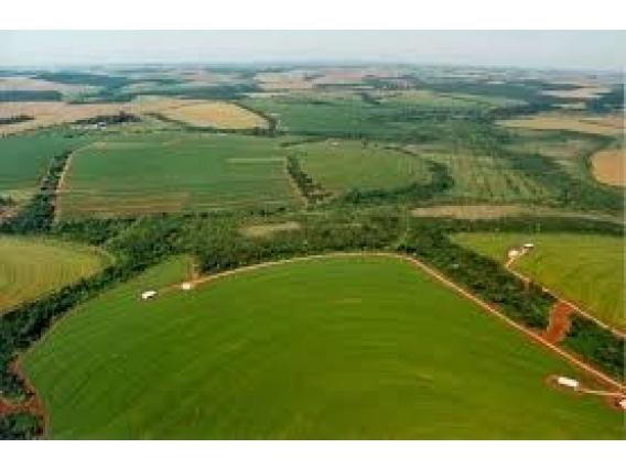 Fazendas no Estado Do Pará Negocio. Tenho Varias