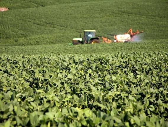 Fazendas no Estado do Pará