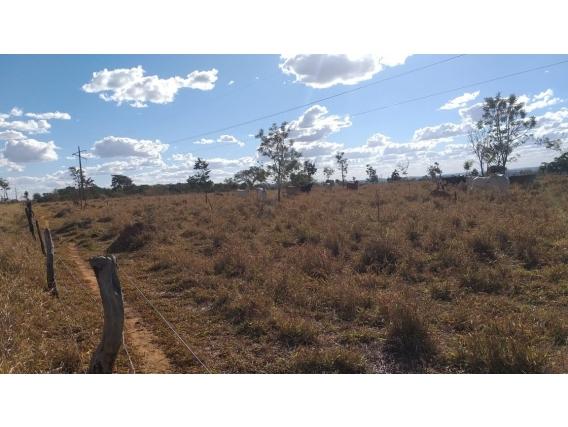 Fazendas E Terrenos No Ceará
