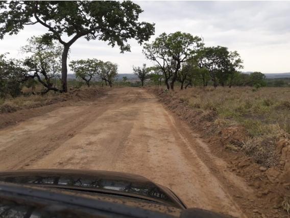 Fazendas e Terrenos no estado de Goiás