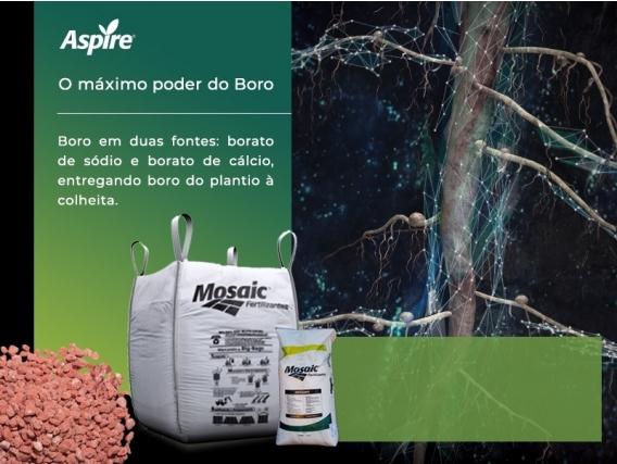 Fertilizante Aspire