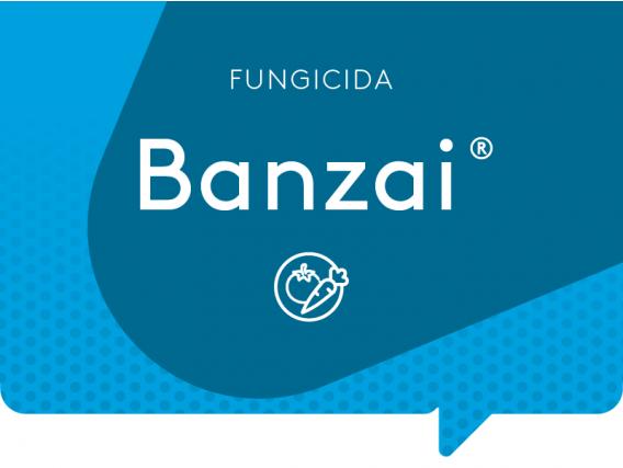 Fungicida Banzai ADAMA