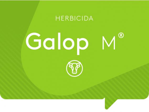 Herbicida Galop M ADAMA