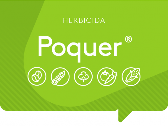 Herbicida Poquer ADAMA