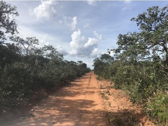 Fazenda Nova Buriti - Mg