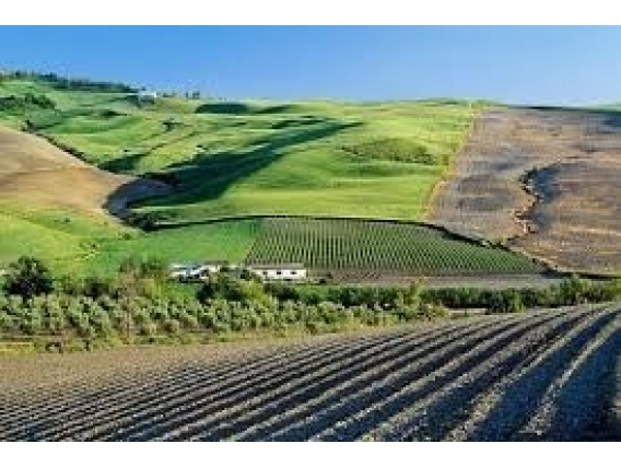 Investimento Diversos E Comprar Imóveis Credito Rural