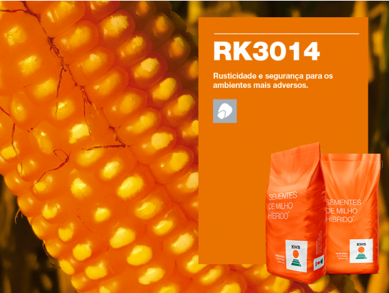 Milho KWS RK3014