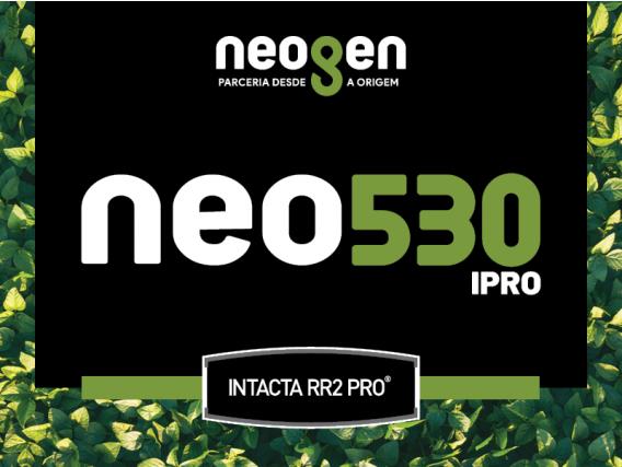 Semente de Soja NEO530 IPRO