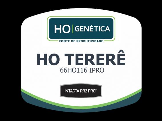 Sementes de Soja HO Genética Tererê IPRO