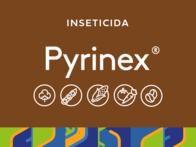 Inseticida Pyrinex® Agricur