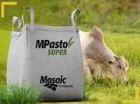 Fertilizante Mpasto Super