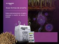 Fertilizante Microessentials S9